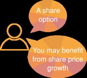Share option help